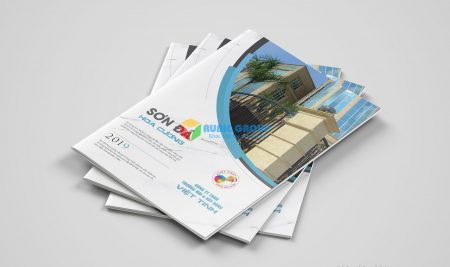 Catalogue công ty Việt Tinh