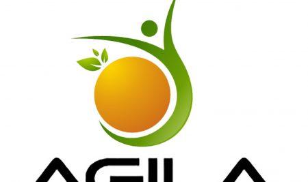 Thiết kế logo thương hiệu Agila