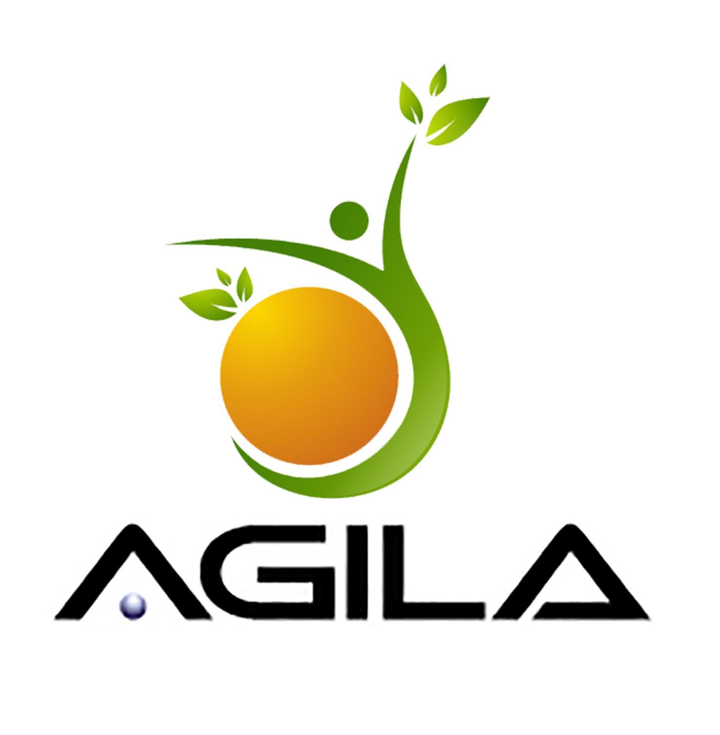 thiết kế logo agila