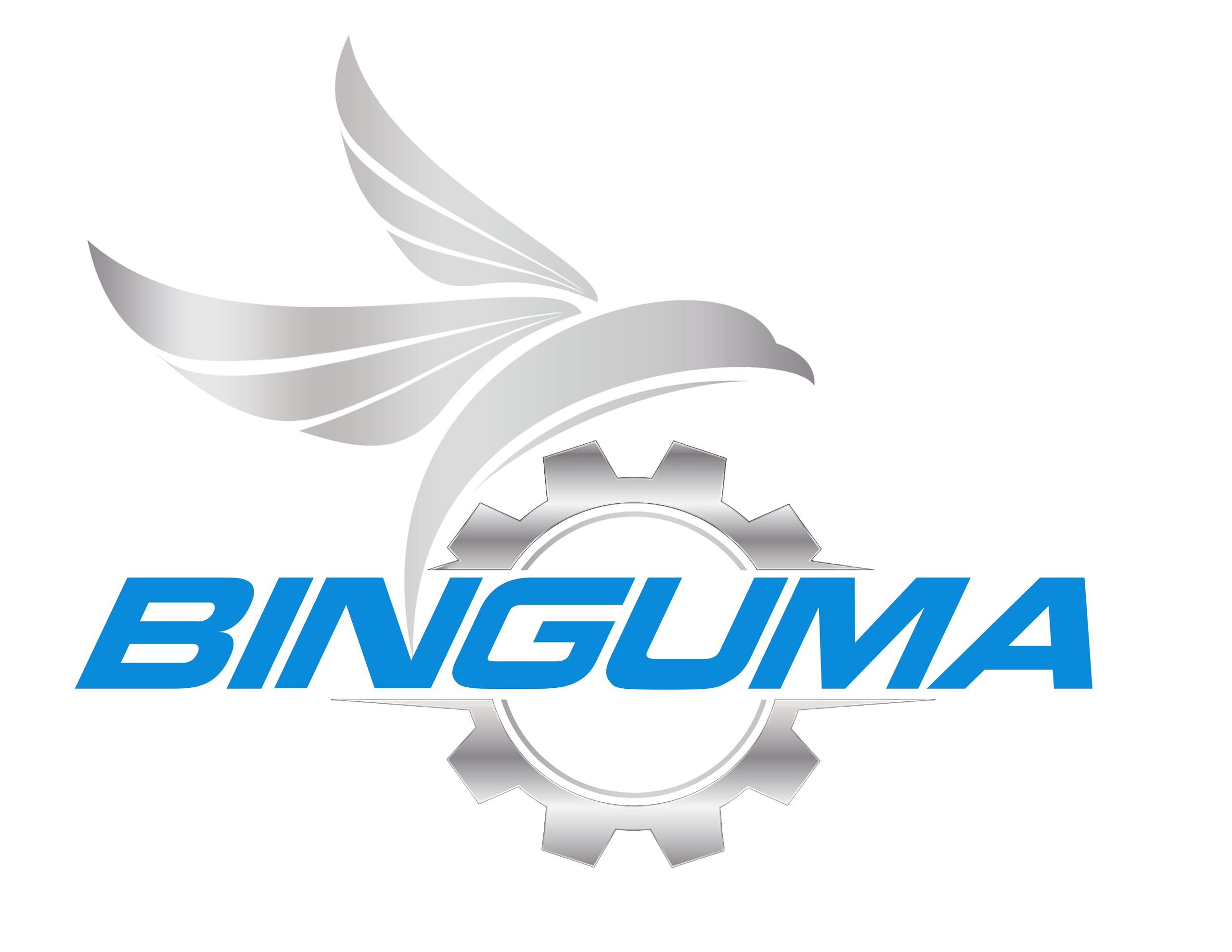 thiết kế logo thương hiệu binguma 1