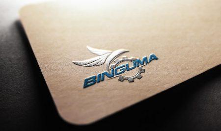 Thiết kế logo thương hiệu Binguma
