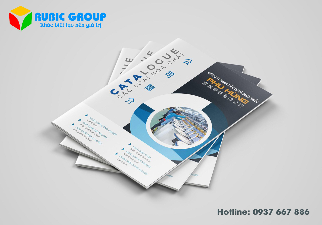 in catalogue tại tphcm 3