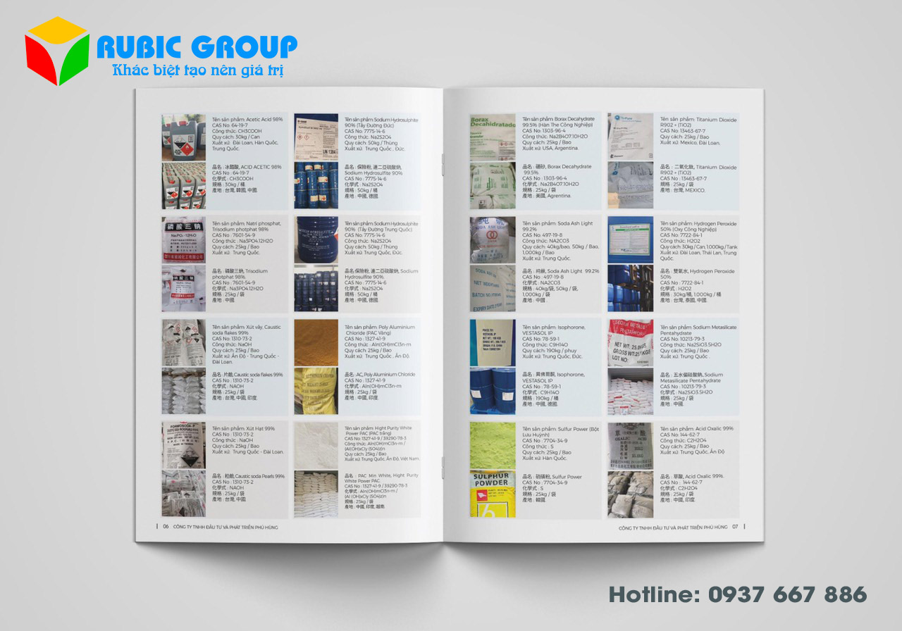 in catalogue tại tphcm 4