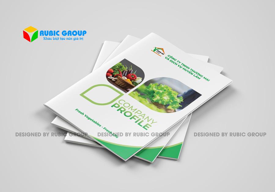 hồ sơ năng lực công ty thực phẩm 1