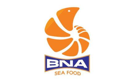 Bộ nhận diện thương hiệu BNA