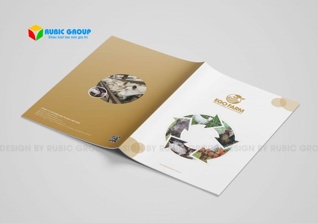 thiết kế brochure giá bao nhiêu 4