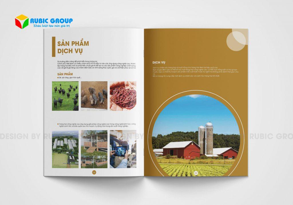thiết kế brochure giá bao nhiêu 5