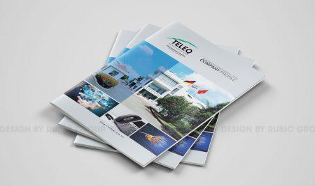 HSNL viễn thông TeleQ