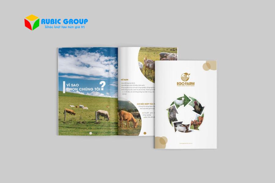 thiết kế brochure chuyên nghiệp rbg