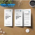 thiết kế leaflet 2