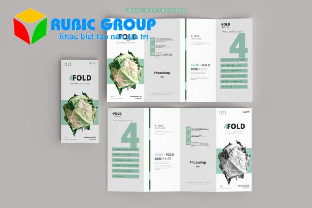 thiết kế leaflet 3